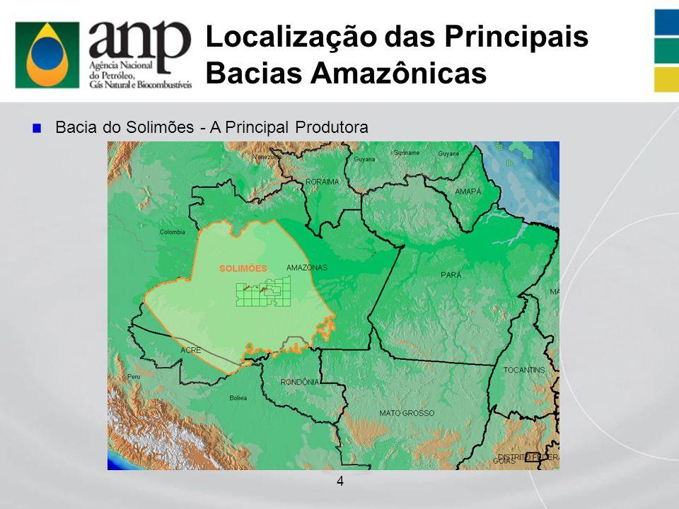 4 Localização das Principais Bacias Amazônicas Bacia do Solimões - A Principal Produtora