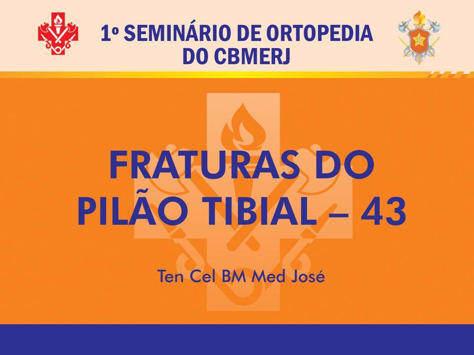 INTRODUÇÃO Termo introduzido em 1911 pelo médico radiologista francês Destot, Plafond (teto), usado em 1950 por Bonin,
