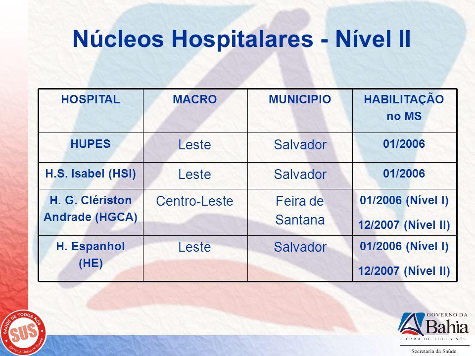 Núcleos Hospitalares - Nível II 01/2006 (Nível I) 12/2007 (Nível II) SalvadorLeste H.