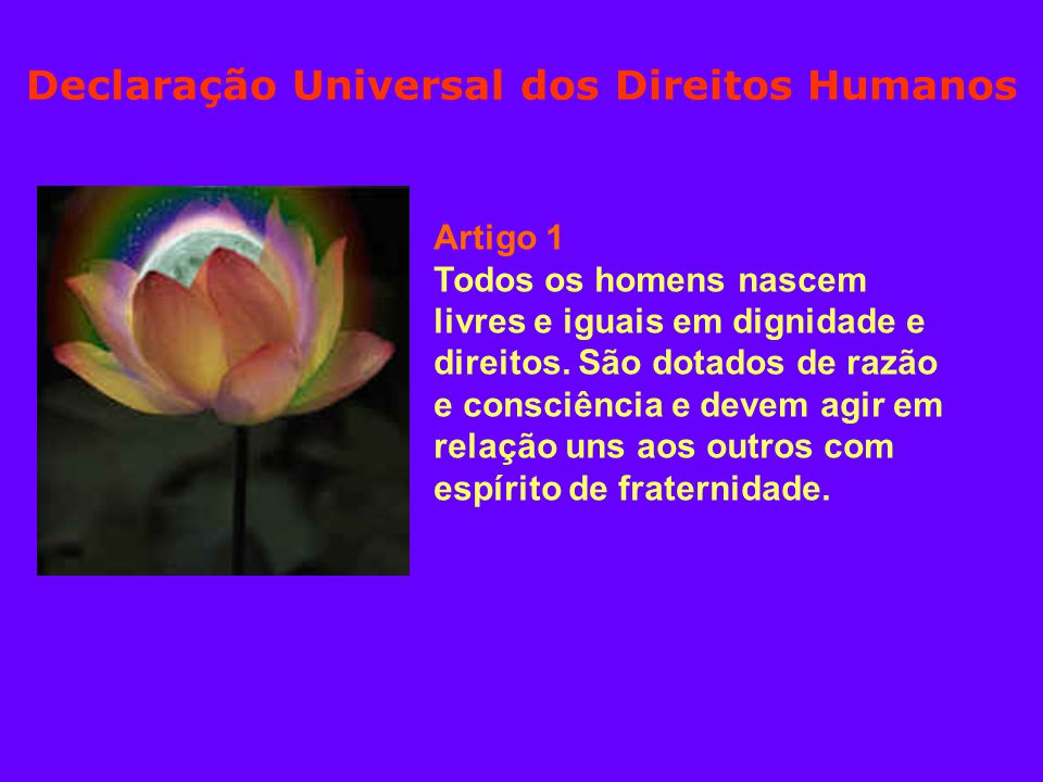 Artigo 1 Todos os homens nascem livres e iguais em dignidade e direitos.