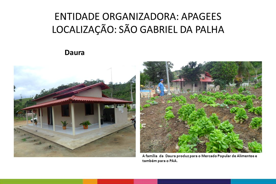 Daura A família da Daura produz para o Mercado Popular de Alimentos e também para o PAA. ENTIDADE ORGANIZADORA: APAGEES LOCALIZAÇÃO: SÃO GABRIEL DA PA