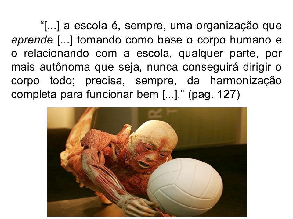 [...] a escola é, sempre, uma organização que aprende [...] tomando como base o corpo humano e o relacionando com a escola, qualquer parte, por mais a
