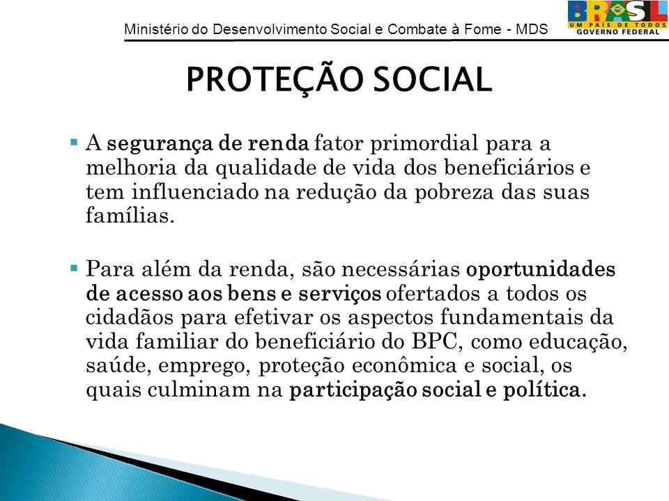 Ministério do Desenvolvimento Social e Combate à Fome - MDS PROTEÇÃO SOCIAL A segurança de renda fator primordial para a melhoria da qualidade de vida