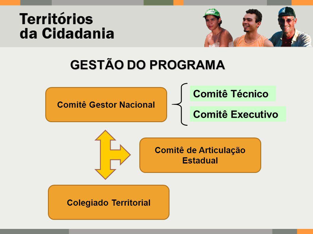 Comitê Gestor Nacional Comitê de Articulação Estadual Colegiado Territorial Comitê Técnico Comitê Executivo GESTÃO DO PROGRAMA