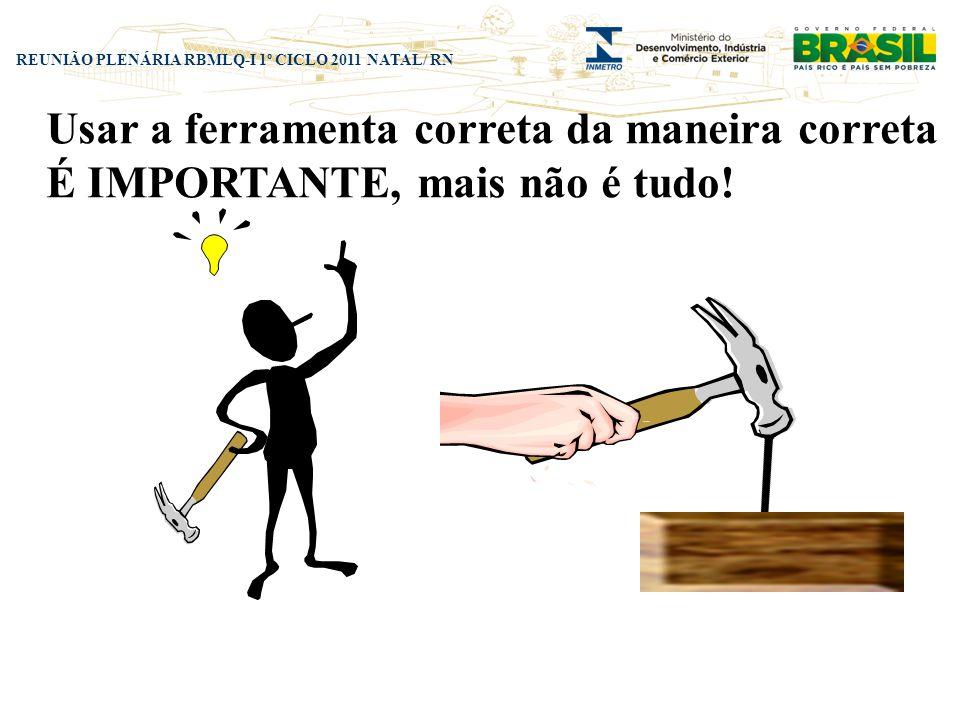 REUNIÃO PLENÁRIA RBMLQ-I 1º CICLO 2011 NATAL/ RN Usar a ferramenta correta da maneira correta É IMPORTANTE, mais não é tudo!