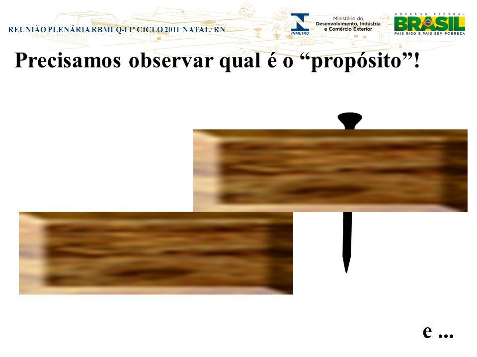 REUNIÃO PLENÁRIA RBMLQ-I 1º CICLO 2011 NATAL/ RN Precisamos observar qual é o propósito! e...