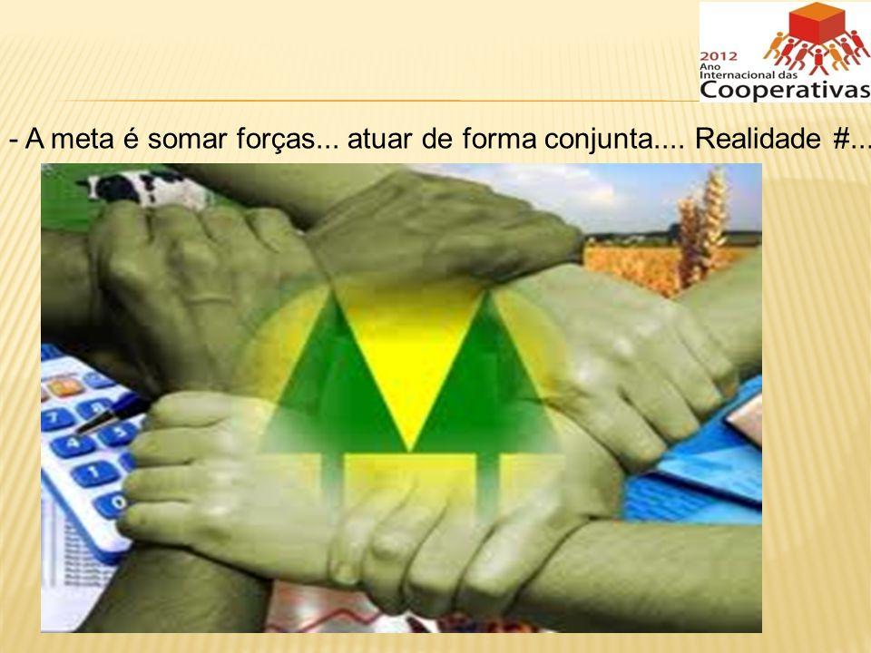 - A meta é somar forças... atuar de forma conjunta.... Realidade #...