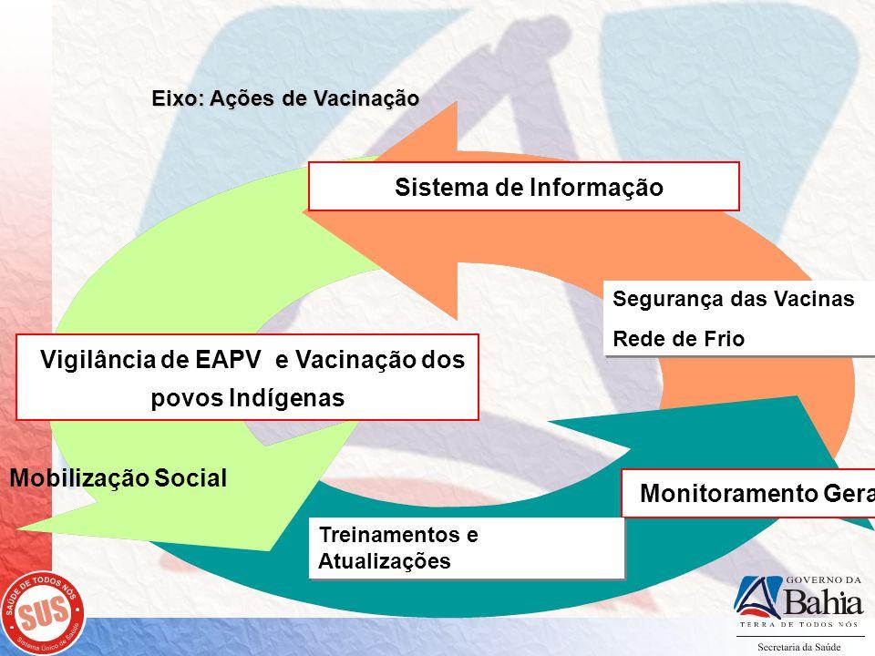 Sistema de Informação Monitoramento Geral Vigilância de EAPV e Vacinação dos povos Indígenas Eixo: Ações de Vacinação Segurança das Vacinas Rede de Frio Segurança das Vacinas Rede de Frio Treinamentos e Atualizações Mobilização Social