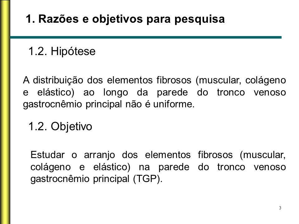 3 1. Razões e objetivos para pesquisa 1.2. Hipótese A distribuição dos elementos fibrosos (muscular, colágeno e elástico) ao longo da parede do tronco