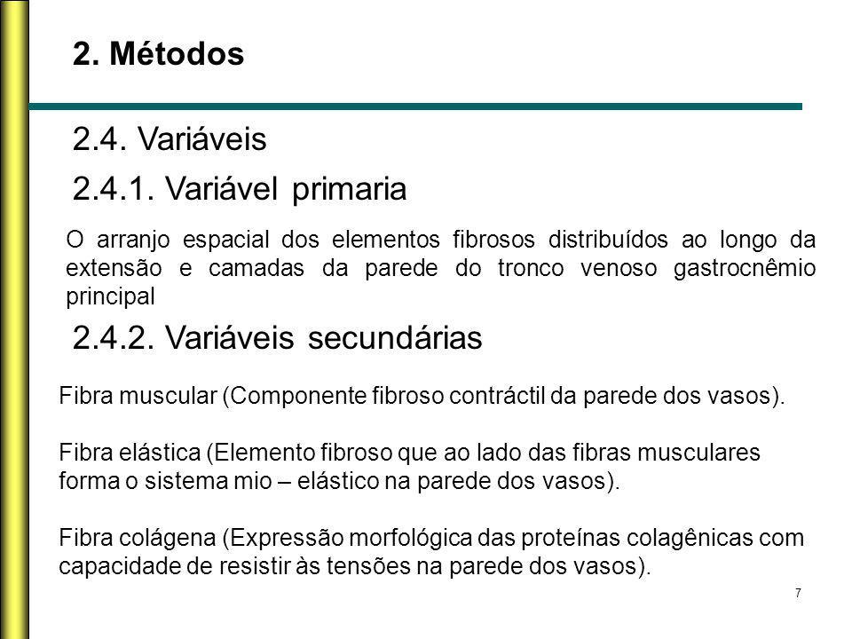 7 2. Métodos 2.4. Variáveis O arranjo espacial dos elementos fibrosos distribuídos ao longo da extensão e camadas da parede do tronco venoso gastrocnê