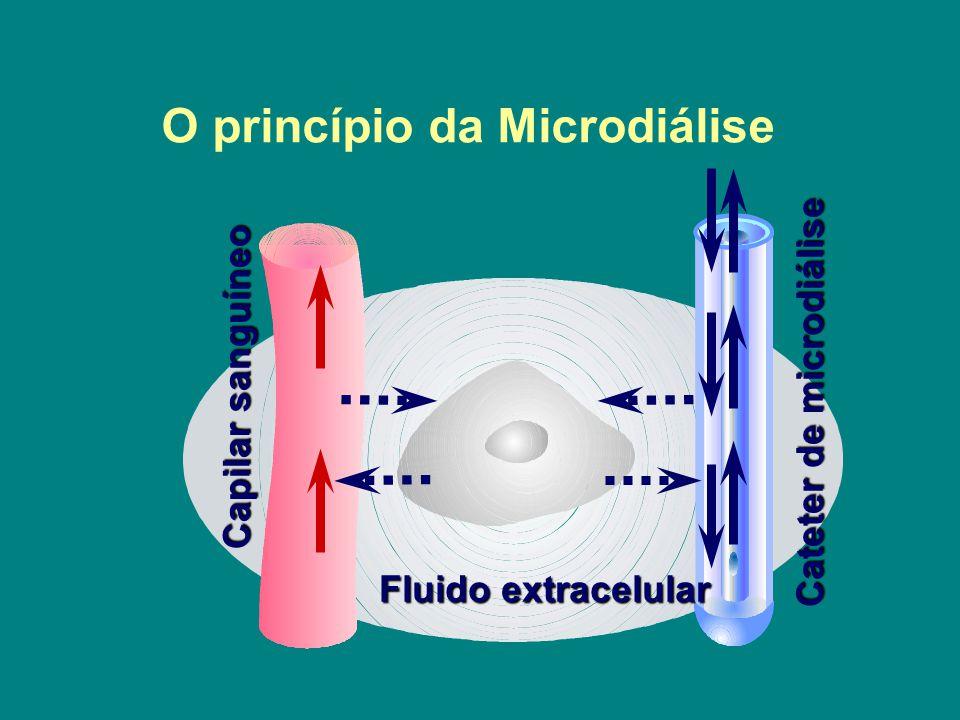 Cell Cateter de microdiálise Fluido extracelular Capilar sanguíneo O princípio da Microdiálise