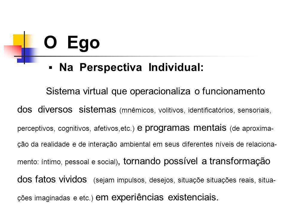 Na Perspectiva Individual: O Ego Sistema virtual que operacionaliza o funcionamento dos diversos sistemas (mnêmicos, volitivos, identificatórios, sens