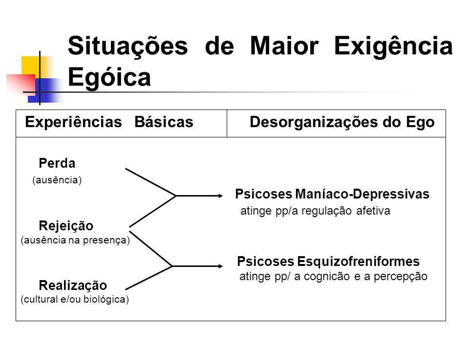 Situações de Maior Exigência Egóica Perda (ausência) atinge pp/a regulação afetiva Rejeição (ausência na presença) Realização (cultural e/ou biológica