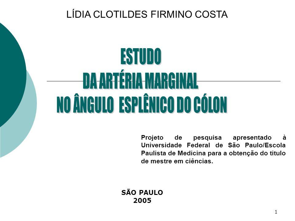 1 LÍDIA CLOTILDES FIRMINO COSTA SÃO PAULO 2005 Projeto de pesquisa apresentado à Universidade Federal de São Paulo/Escola Paulista de Medicina para a