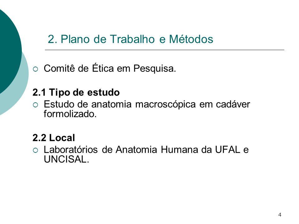 4 2. Plano de Trabalho e Métodos Comitê de Ética em Pesquisa. 2.1 Tipo de estudo Estudo de anatomia macroscópica em cadáver formolizado. 2.2 Local Lab
