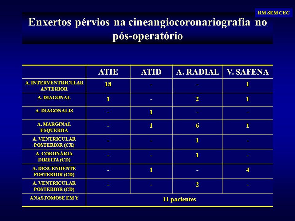 Enxertos pérvios na cineangiocoronariografia no pós-operatório ATIEATIDA. RADIALV. SAFENA A. INTERVENTRICULAR ANTERIOR 18--1 A. DIAGONAL 1-21 A. DIAGO