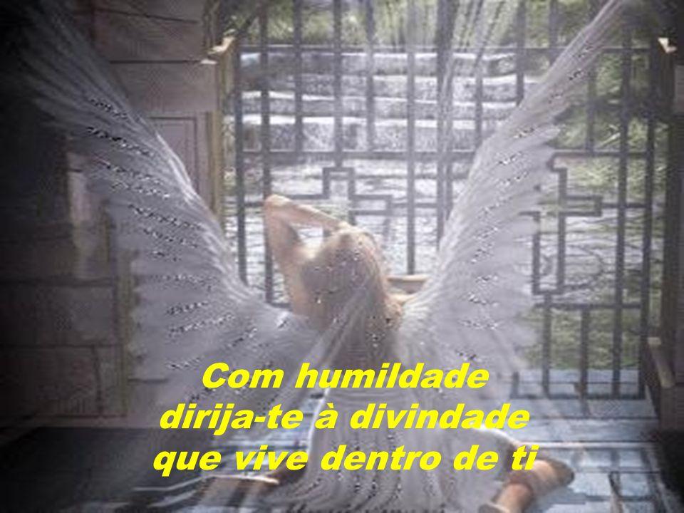 Já cruzei com muitos anjos sem asas na minha vida.