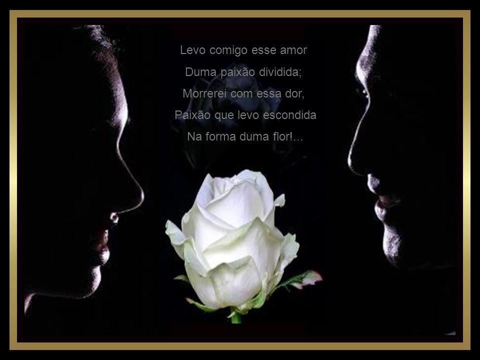 Levo comigo esse amor Duma paixão dividida; Morrerei com essa dor, Paixão que levo escondida Na forma duma flor!...