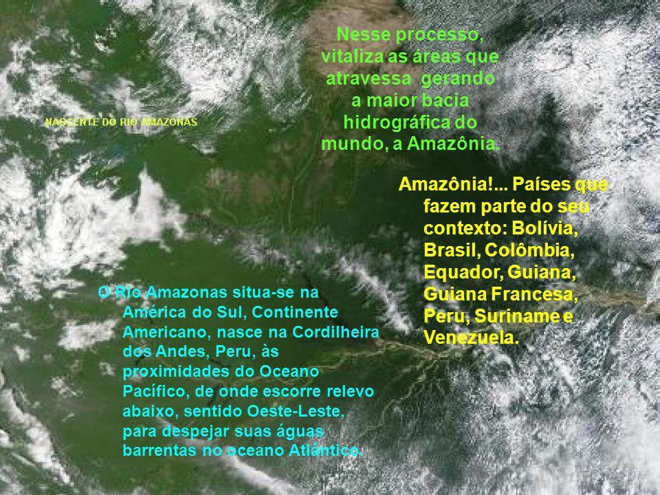Nesse processo, vitaliza as áreas que atravessa gerando a maior bacia hidrográfica do mundo, a Amazônia. O Rio Amazonas situa-se na América do Sul, Co