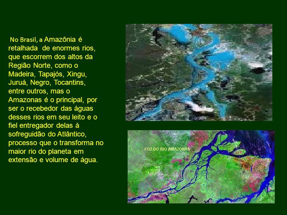 No Brasil, a Amazônia é retalhada de enormes rios, que escorrem dos altos da Região Norte, como o Madeira, Tapajós, Xingu, Juruá, Negro, Tocantins, en
