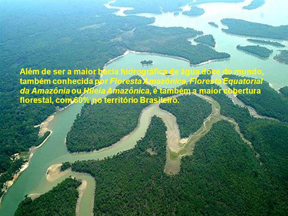 Além de ser a maior bacia hidrográfica de água doce do mundo, também conhecida por Floresta Amazônica, Floresta Equatorial da Amazônia ou Hileia Amazô