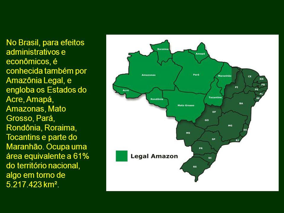 No Brasil, para efeitos administrativos e econômicos, é conhecida também por Amazônia Legal, e engloba os Estados do Acre, Amapá, Amazonas, Mato Gross