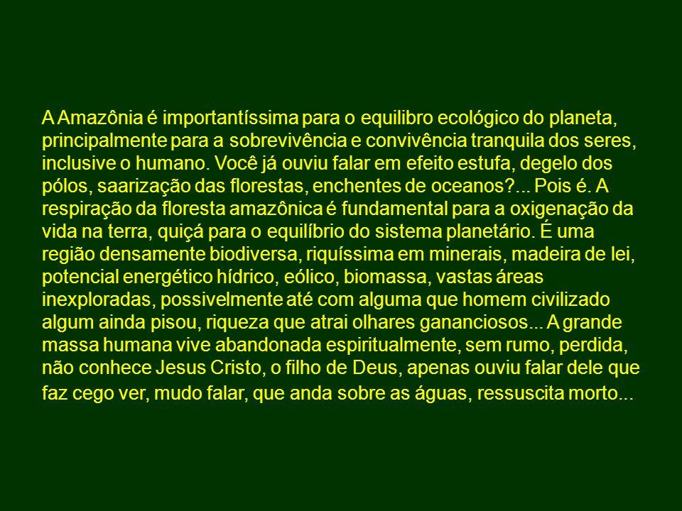 A Amazônia é importantíssima para o equilibro ecológico do planeta, principalmente para a sobrevivência e convivência tranquila dos seres, inclusive o