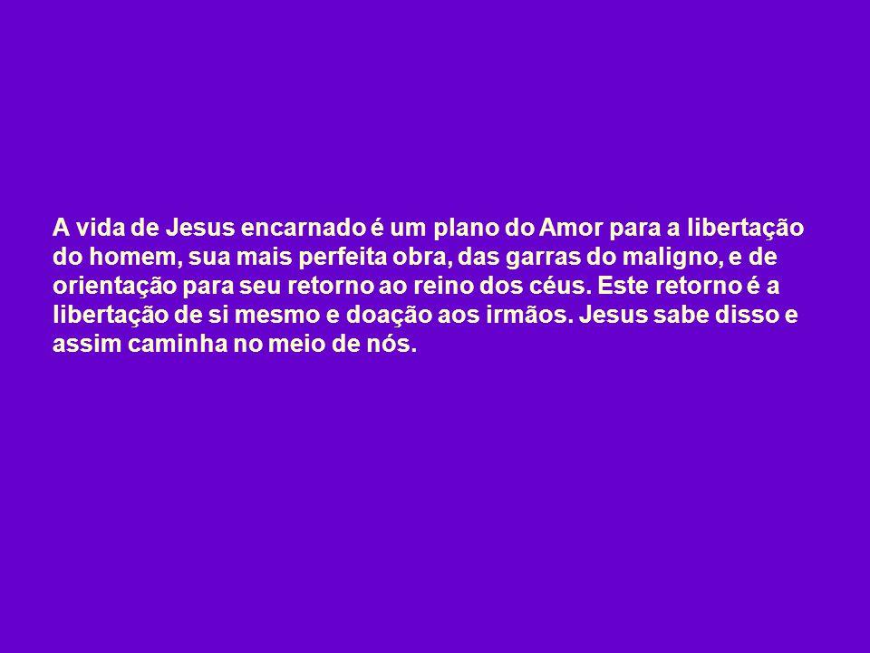 A vida de Jesus encarnado é um plano do Amor para a libertação do homem, sua mais perfeita obra, das garras do maligno, e de orientação para seu retorno ao reino dos céus.