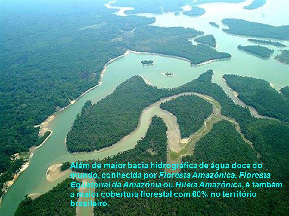 Além de maior bacia hidrográfica de água doce do mundo, conhecida por Floresta Amazônica, Floresta Equatorial da Amazônia ou Hileia Amazônica, é també