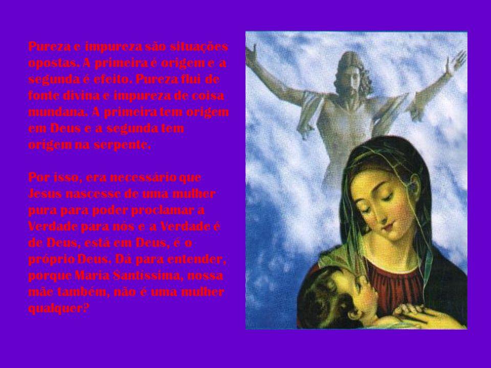 Pureza e impureza são situações opostas. A primeira é origem e a segunda é efeito. Pureza flui de fonte divina e impureza de coisa mundana. A primeira