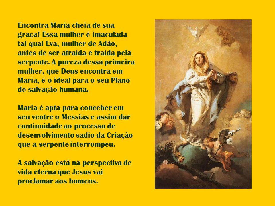 Encontra Maria cheia de sua graça! Essa mulher é imaculada tal qual Eva, mulher de Adão, antes de ser atraída e traída pela serpente. A pureza dessa p