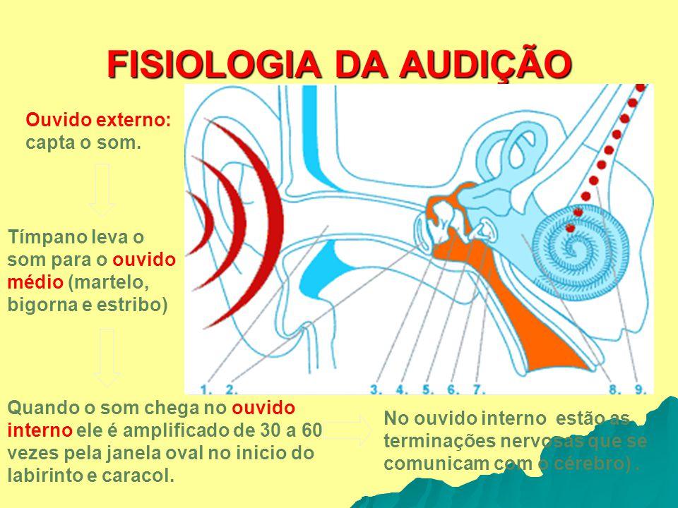 FISIOLOGIA DA AUDIÇÃO Ouvido externo: capta o som. Tímpano leva o som para o ouvido médio (martelo, bigorna e estribo) Quando o som chega no ouvido in