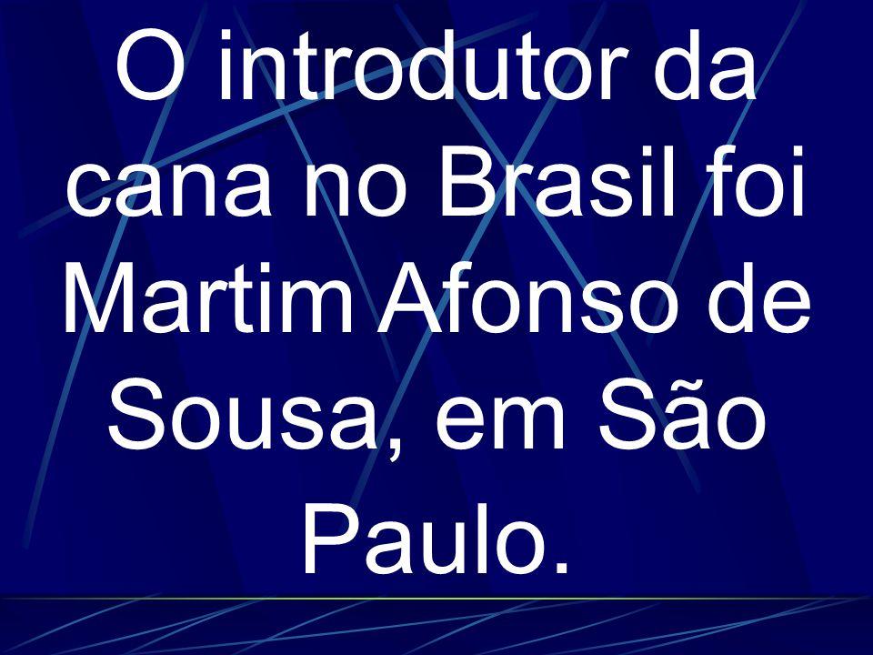 O introdutor da cana no Brasil foi Martim Afonso de Sousa, em São Paulo.