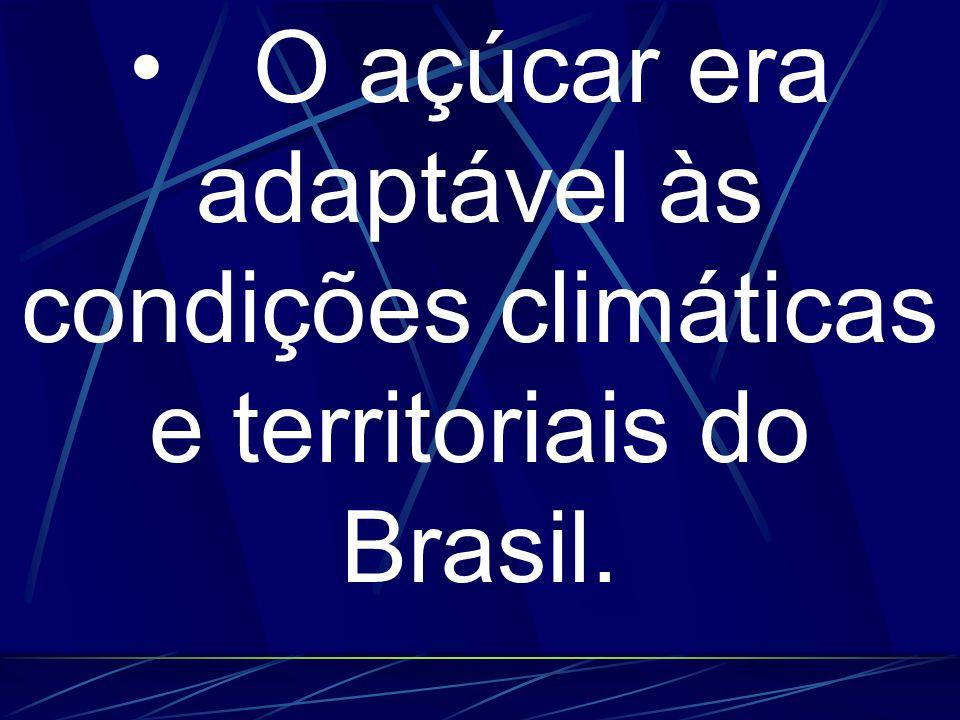 O açúcar era adaptável às condições climáticas e territoriais do Brasil.
