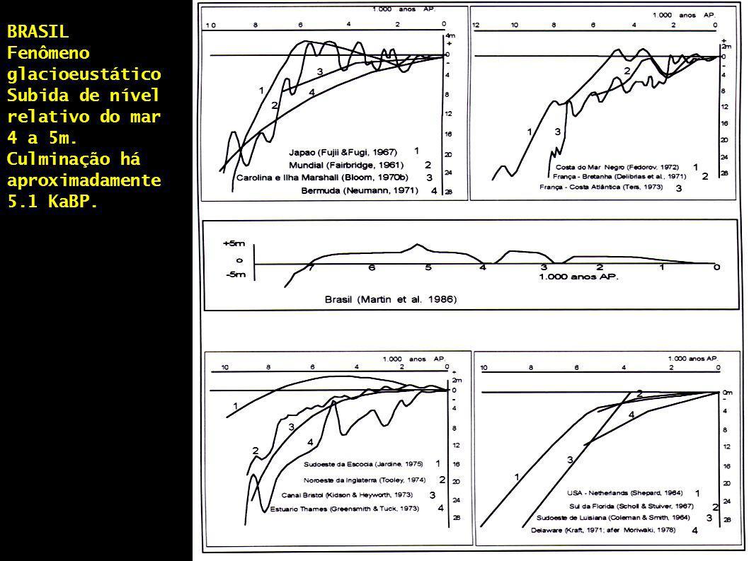 BRASIL Fenômeno glacioeustático Subida de nível relativo do mar 4 a 5m. Culminação há aproximadamente 5.1 KaBP.