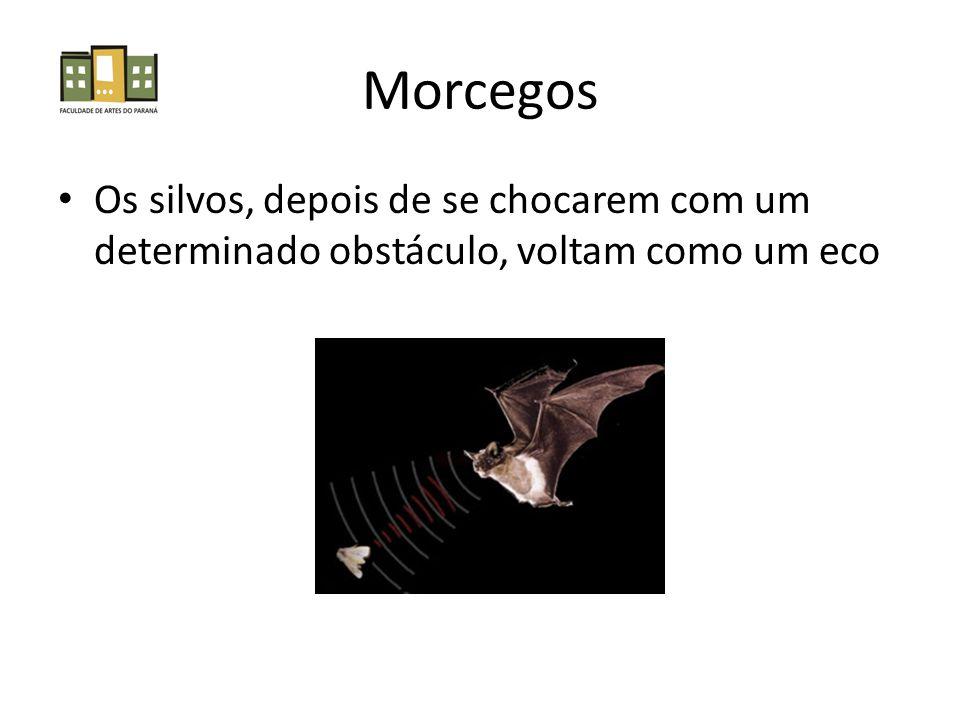 Morcegos Os silvos, depois de se chocarem com um determinado obstáculo, voltam como um eco
