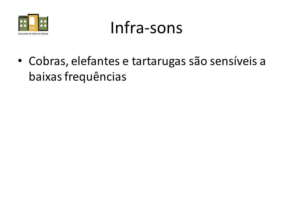 Infra-sons Cobras, elefantes e tartarugas são sensíveis a baixas frequências