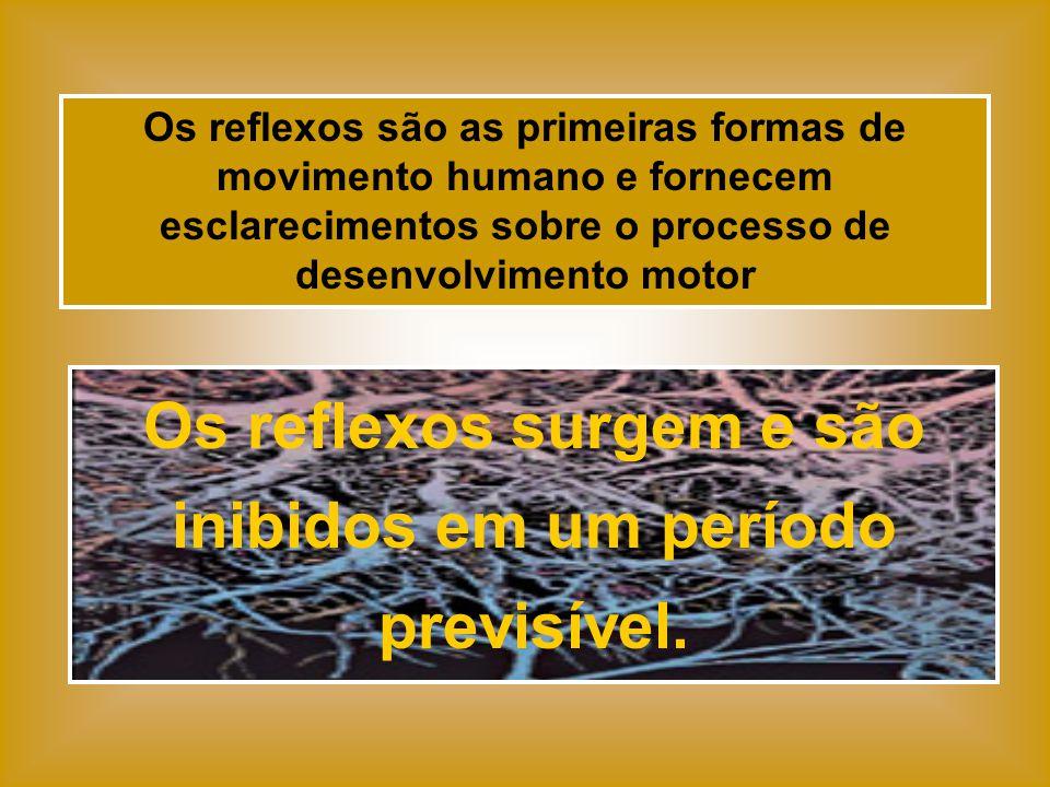 Os reflexos são as primeiras formas de movimento humano e fornecem esclarecimentos sobre o processo de desenvolvimento motor Os reflexos surgem e são