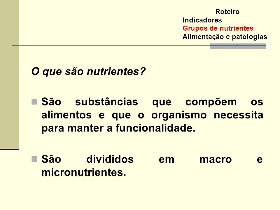 O que são nutrientes? São substâncias que compõem os alimentos e que o organismo necessita para manter a funcionalidade. São divididos em macro e micr