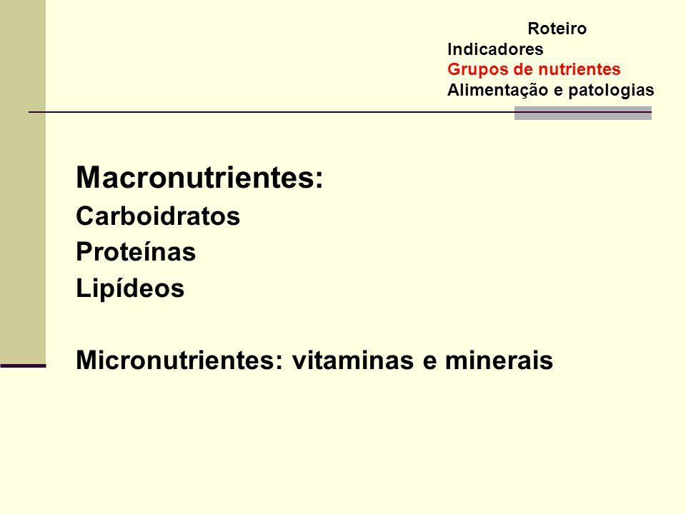 Macronutrientes: Carboidratos Proteínas Lipídeos Micronutrientes: vitaminas e minerais Roteiro Indicadores Grupos de nutrientes Alimentação e patologi