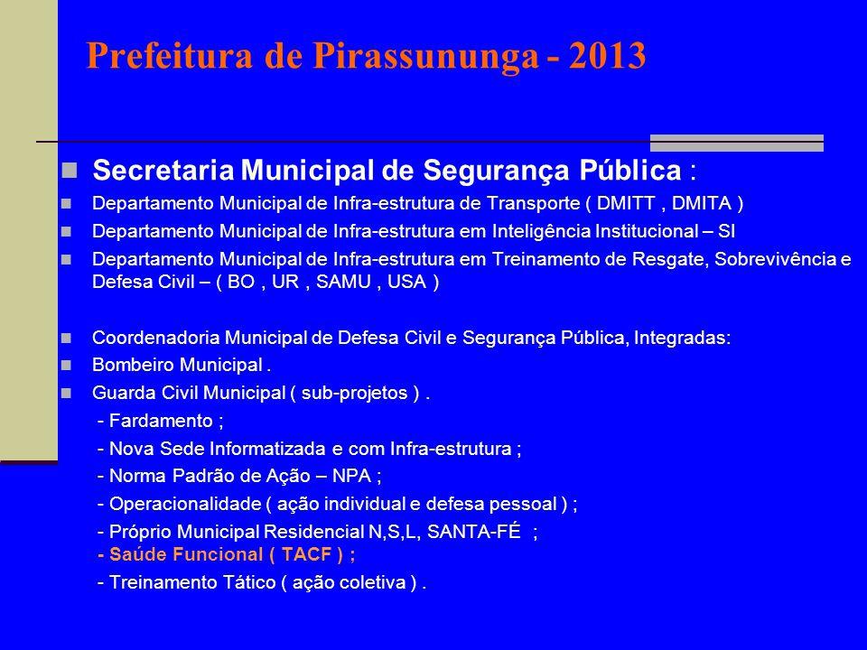 Prefeitura de Pirassununga - 2013 Secretaria Municipal de Segurança Pública : Departamento Municipal de Infra-estrutura de Transporte ( DMITT, DMITA )