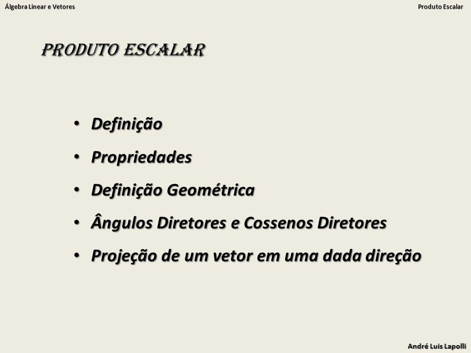 André Luis Lapolli Álgebra Linear e Vetores Produto Escalar Produto Escalar Definição Definição Propriedades Propriedades Definição Geométrica Definição Geométrica Ângulos Diretores e Cossenos Diretores Ângulos Diretores e Cossenos Diretores Projeção de um vetor em uma dada direção Projeção de um vetor em uma dada direção