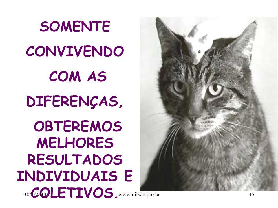 PERCEPÇÃO 30/5/201444www.nilson.pro.br