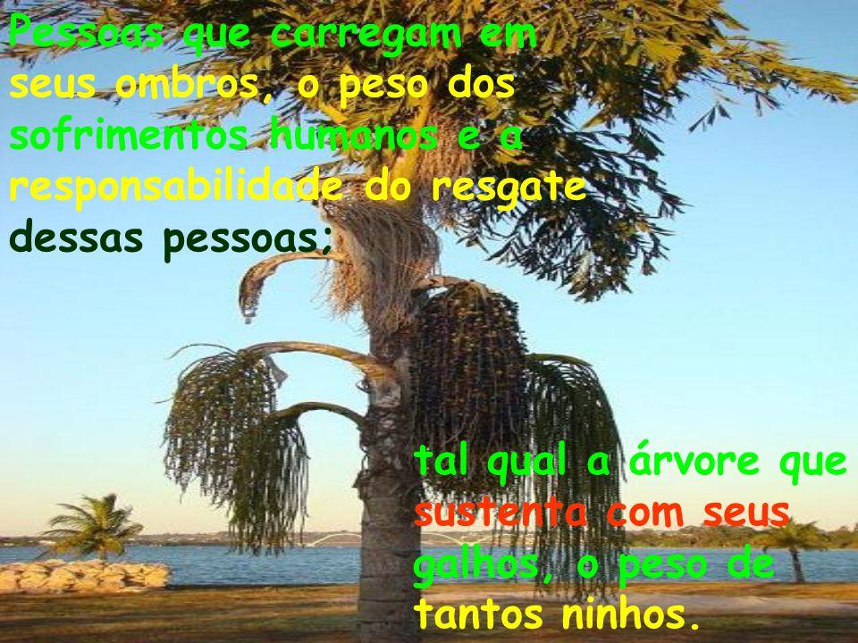 Assim como as árvores, existem pessoas igualmente fortes, solidárias e amigas, que têm como elas a importante missão de preservar, melhorar e salvar o