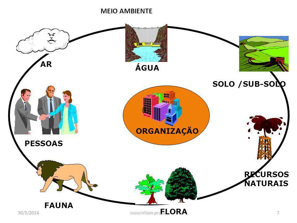 MEIO AMBIENTE ÁGUA SOLO /SUB-SOLO RECURSOS NATURAIS FLORA FAUNA PESSOAS AR ORGANIZAÇÃO (L) 30/5/20147www.nilson.pro.br