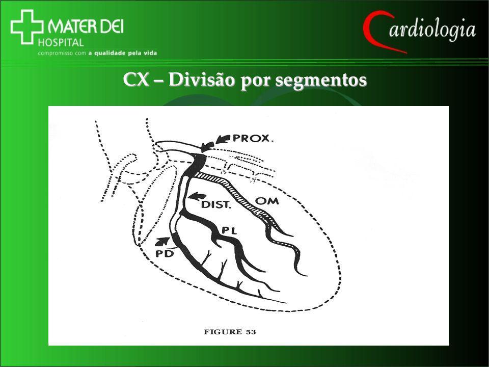 CX – Divisão por segmentos