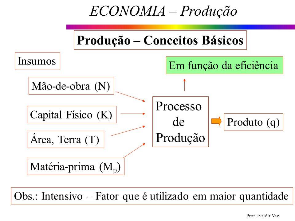 Prof. Ivaldir Vaz ECONOMIA – Produção 4 Produção – Conceitos Básicos Mão-de-obra (N) Capital Físico (K) Área, Terra (T) Matéria-prima (M p ) Insumos P