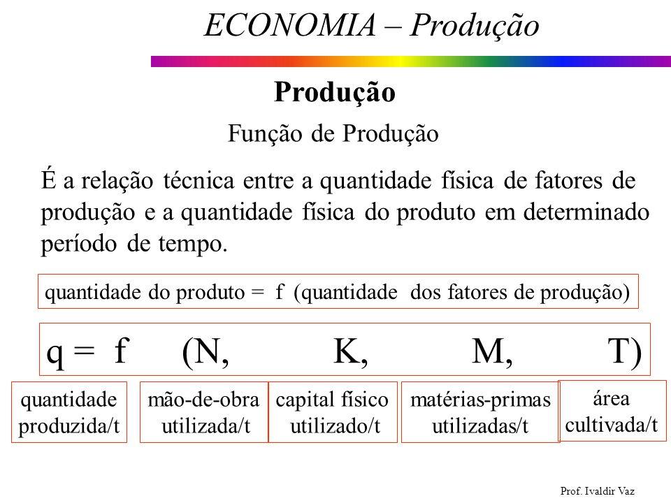 Prof. Ivaldir Vaz ECONOMIA – Produção 5 Produção Função de Produção É a relação técnica entre a quantidade física de fatores de produção e a quantidad