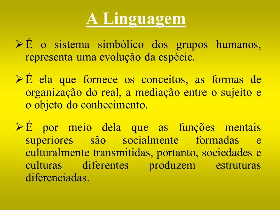 A Linguagem É o sistema simbólico dos grupos humanos, representa uma evolução da espécie. É ela que fornece os conceitos, as formas de organização do