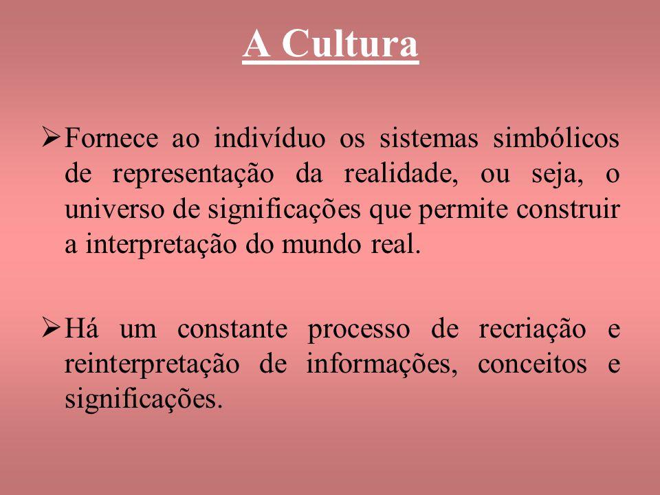 A Cultura Fornece ao indivíduo os sistemas simbólicos de representação da realidade, ou seja, o universo de significações que permite construir a inte